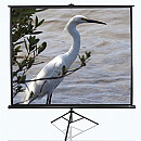 "Elite Screens T120NWV1 Tripod Pull Up Screen 120"" (96"" X 72"")"